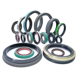 CR OIL SEAL, 2 X 1X .300